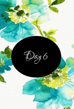 day6